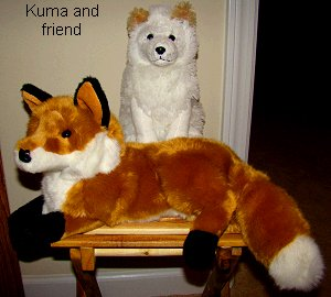 Kima and the fox