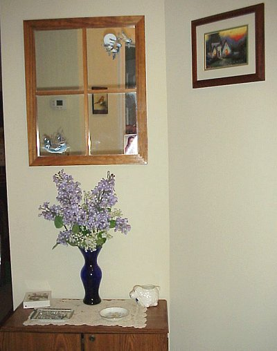 mirror and storage cabinet