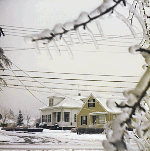 Houses framed in icy branches
