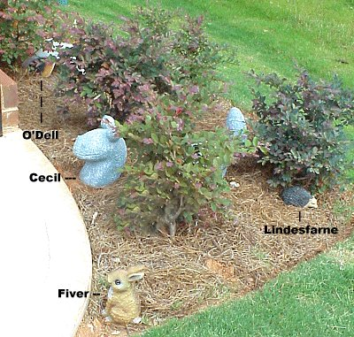 Garden ornaments 2