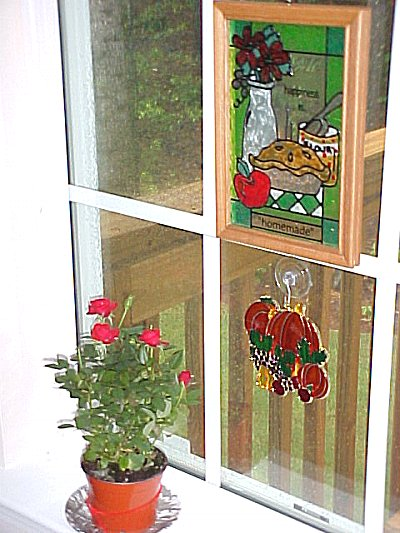 Rose-San in her window