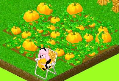 Webkinz Halloween pumpkin patch